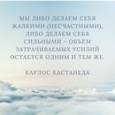 Елена Грицкив фото #2