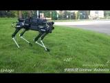 Китайская компания Unitree Robotics представила робопса Laikago