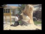 Резьба бензопилой. Подборка от канала TAT Woodworking