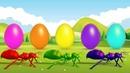 Learn Colors And Numbers With Animals | Bé Học Số Và Màu Sắc Cùng Các Con Vật
