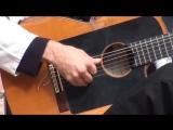 Испанская гитара в руках мастера!!!