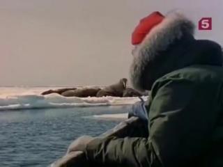 1972 Улыбка моржа - Подводная одиссея команды Кусто