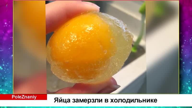 Доказательства того что зима это не только снежинки мандаринки но и лютый мороз