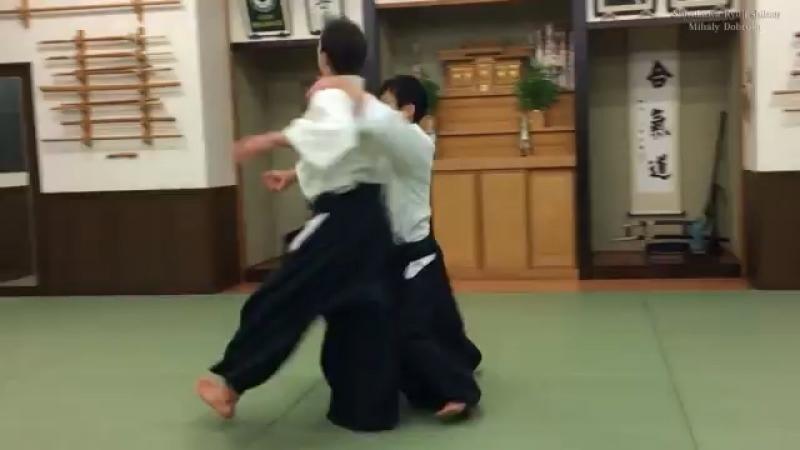 Aikido jiyu waza 6th dan aikikai