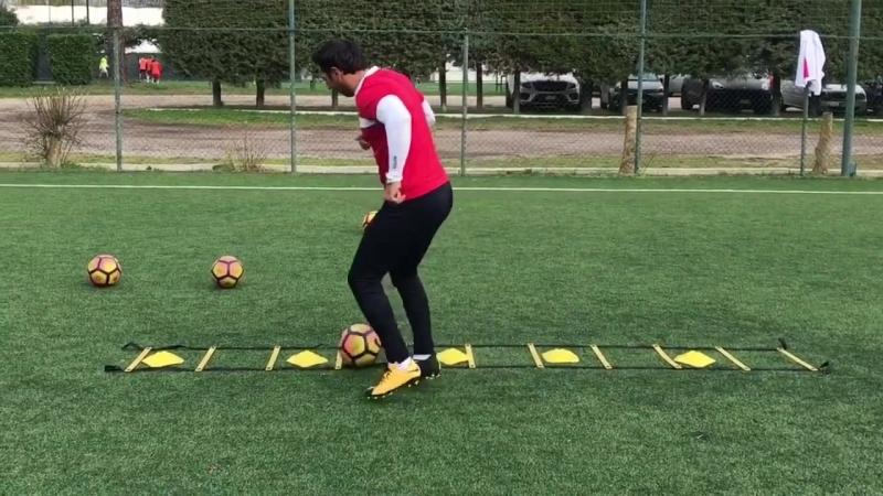 Esercizi Dominio palla con utilizzo scaletta prof Fabio Patteri