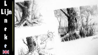 How to draw realistic TREES with Charcoal and Graphite pencil for beginners