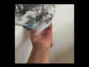 Любимое занятие водные процедуры Какой чистюля