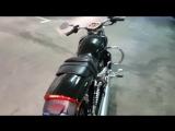 Harley Davidson v rod muscle 2010