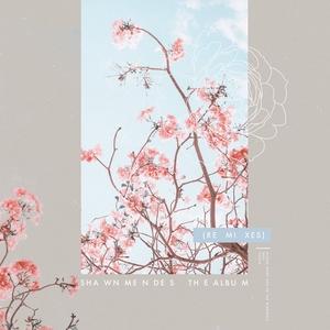 The Album (Remixes)