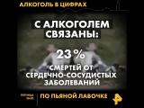 По пьяной лавочке 24 августа на РЕН ТВ