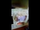 21 век. ЛЕТО. В г.УФА, ИЮНЕ 2018г., идёт дождь с ГРАДОМ. СЫРОЙ, ХОЛОДНЫЙ БАРАК БЕЗ УДОБСТВ. Бабушка 80-летняя ТОПИТ ПЕЧКУ ДРОВАМ