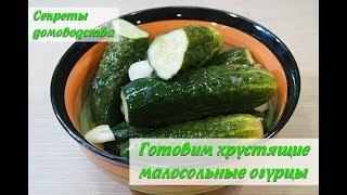 Малосольные огурцы Вкусные хрустящие за сутки salted cucumbers