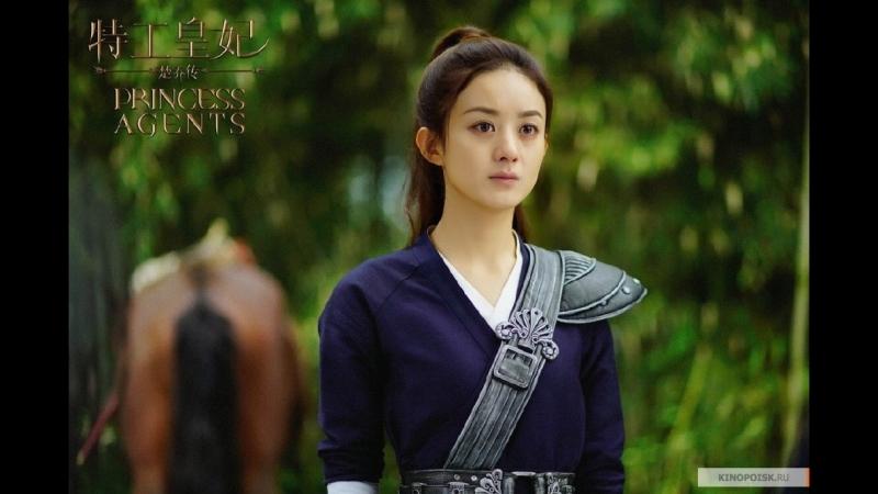 Принцесса шпионка. Чжао Ли Ин