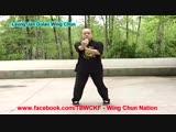 Dragon Shogun Dojo Arkansas_ Leung Jan Gulao Wing Chun Complete