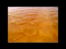 Детская Песня про Песок Потешка Логоритмика Развитие речи Раннее развитие Л