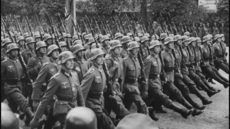 Размер гитлеровских пенсий бельгийским нацистам возмутил парламентариев страны