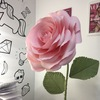 Большие бумажные цветы. МИНСК