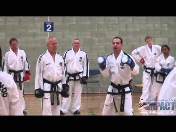 Master Willy Tomaz Barada Sparring Seminar Brighton 2013