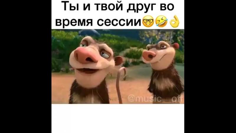 Mult_laugh_35355881_173902813286445_211809838370390016_n.mp4