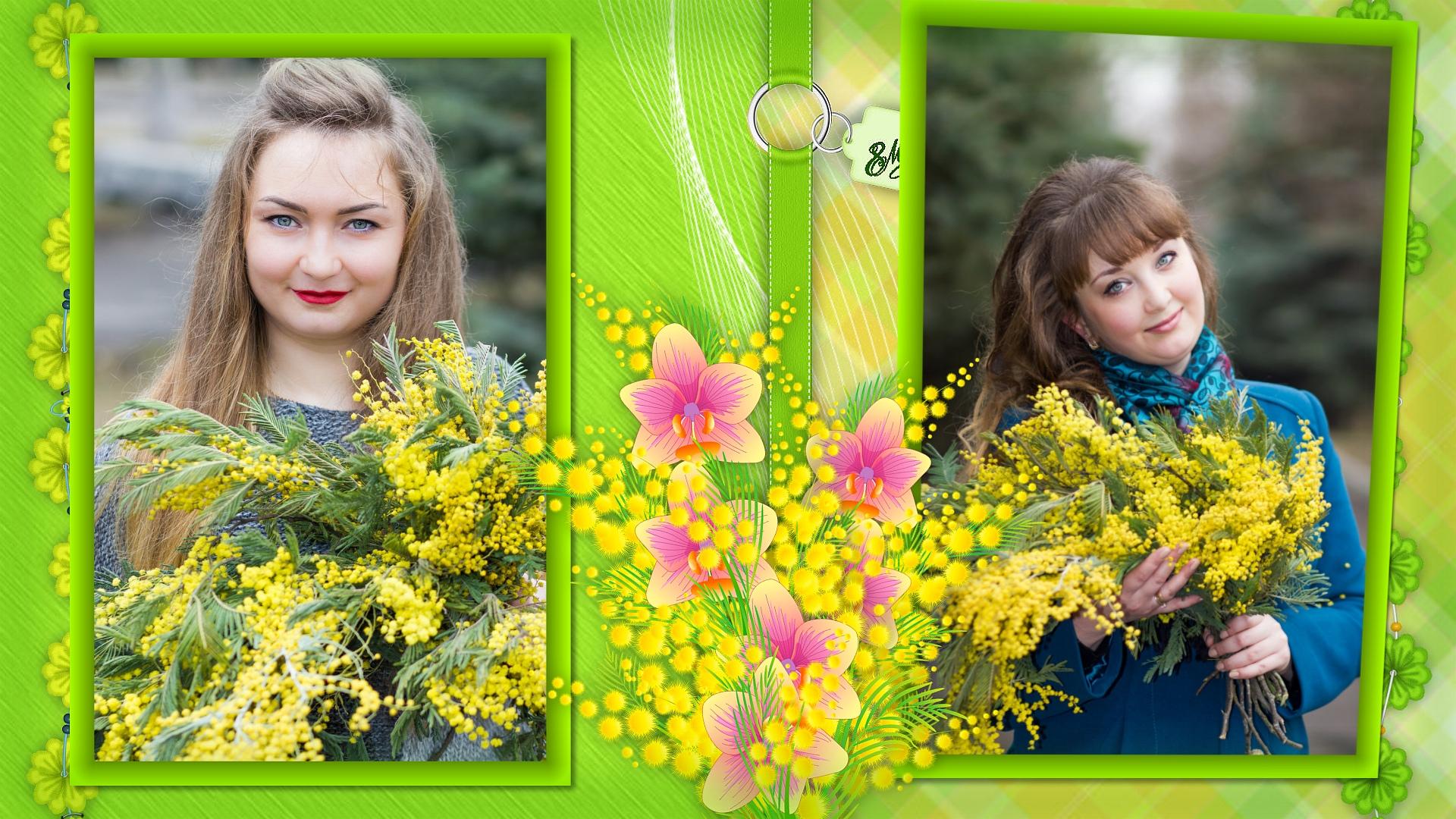 Весенняя мимоза,  Spring Mimosa