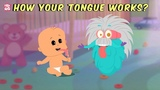 How Your Tongue Works - The Dr. Binocs Show Best Learning Videos For Kids Peekaboo Kidz