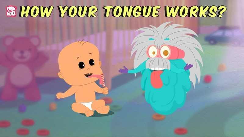 How Your Tongue Works? - The Dr. Binocs Show | Best Learning Videos For Kids | Peekaboo Kidz