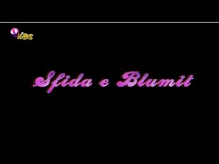 Winx Club - Sezoni 4 Episodi 23 - Sfida e Blumit - [EPISODI I PLOTË]