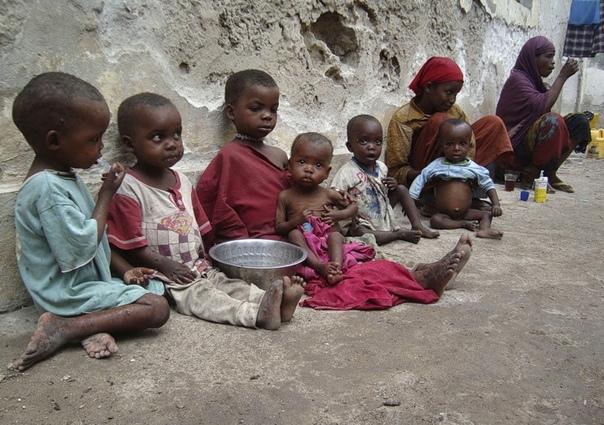 Как благотворительность убивает голодных африканских детей Все мы сотни раз видели вот такие жалостливые картинки и лозунги в стиле накормим голодных детей Африки:При этом особенно