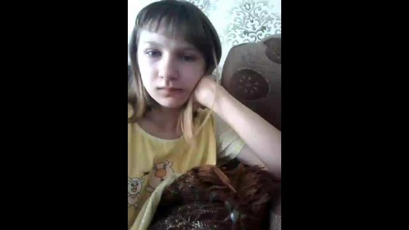 Дарья Цикалова - Live