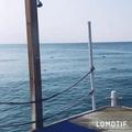 sazon_chik_ video