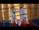 Сэйкен ой цуки тюдан - левый прямой из боевой стойки в Кёкусинкай карате в бою. Секрет использования веса тела. Сильный удар