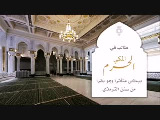 وفاةُ النبي ﷺ من أعمق لحظات السيرة حزناً وألماً ، لا يكادُ يسمعها مسلمٌ إلا وتفطر قلبه وذرفت عينه ، فما أعظم مصابَ الأمةِ برحيل