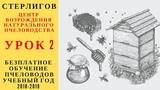 МОСКВА ГЕРМАН СТЕРЛИГОВ МЕД - БЕЗПЛАТНОЕ ОБУЧЕНИЕ ПЧЕЛОВОДСТВУ НАТУРАЛЬНОМУ 2018-2019 УРОК 2 - ЦВНП