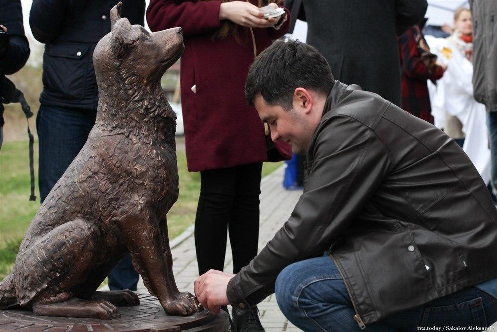 Памятник-копилку для помощи животным установили в Томске у общежития ТГУ