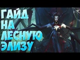 League of Legends (LoL). Элиза гайд. Внешность обманчива