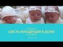 Шесть младенцев в доме - TLC