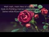 ~ Faun - Wilde Rose (Lyrics) ~ 1080 x 1920