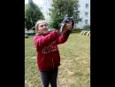 воронёнок