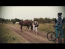 Лошади Сб. 15.09.18