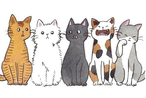 «любопытные факты о котейках» у большинства людей дома живёт кошка. но мало кто знает интересные факты о них: – в среднем кошки тратят 2/3 суток на сон. это означает, что девятилетний