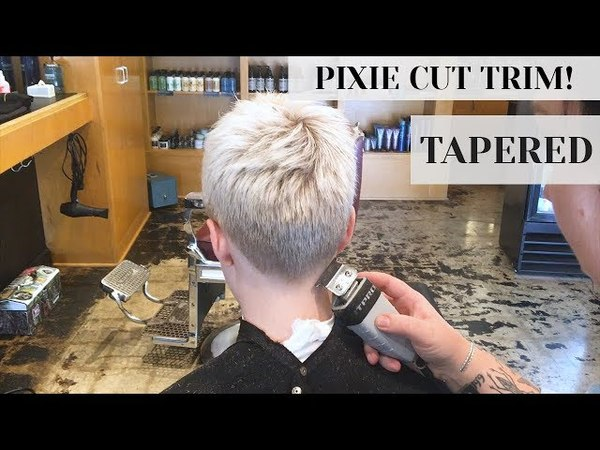 Pixie Cut Trim at Rudy's Barbershop Clippers Tapered Fade Haircut