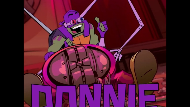 Rise of the Teenage Mutant Ninja Turtles - Donnie