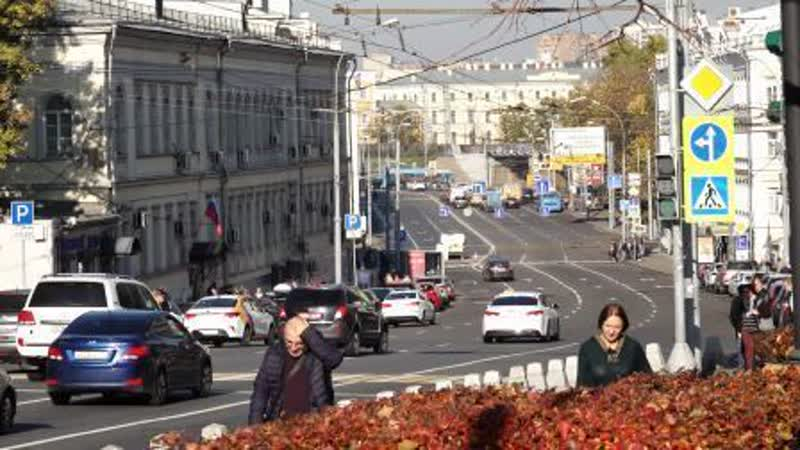 Золотая жила для чиновников: что мешает ввести на дорогах России систему штрафных баллов