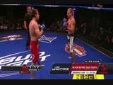 12 - Donald Cerrone vs. James Krause WEC 41 Brown vs. Faber 2
