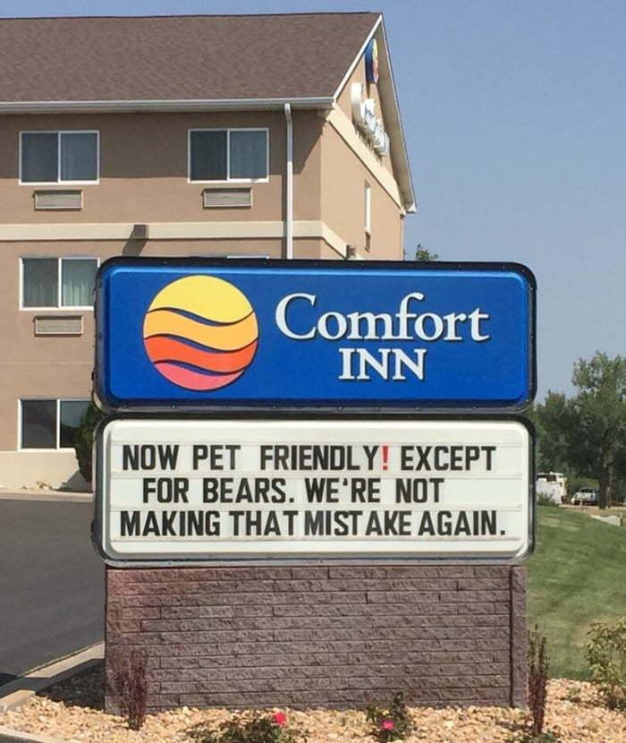 Теперь можно с домашними животными