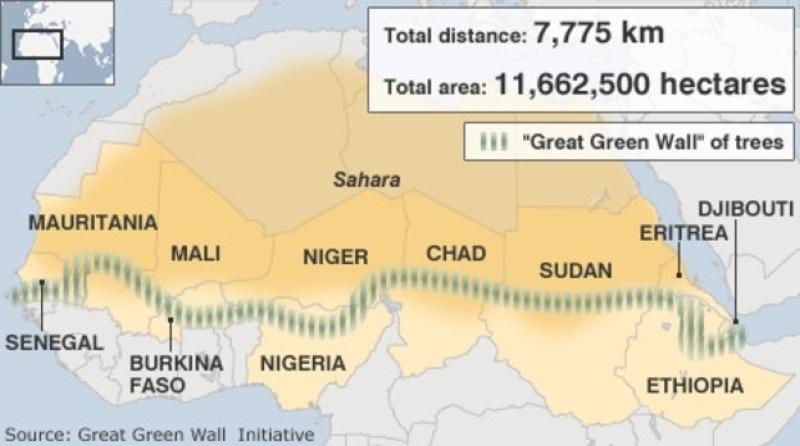 А вы знали, что уже «построено» 15% Великой Зеленой Стены в Сахаре