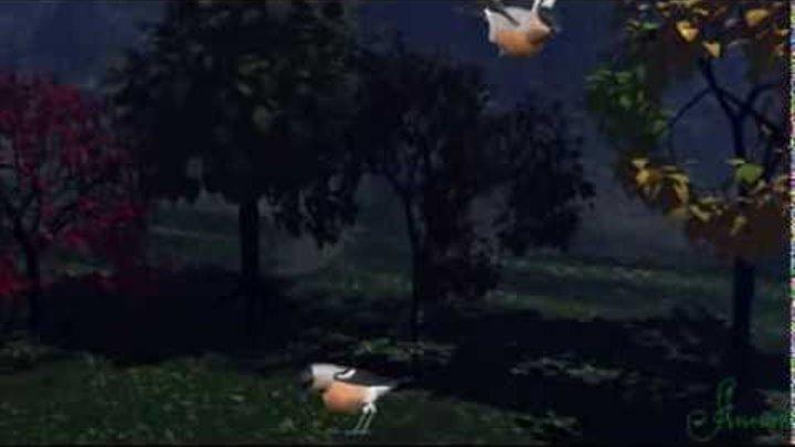 Шум дождя и пение птиц под прекрасную мелодию. Noise raining singing of birds.