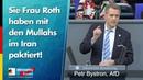 Sie, Frau Roth, haben mit den Mullahs im Iran paktiert! - Petr Bystron - AfD-Fraktion im Bundestag