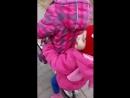 Video-0-02-05-7b782e7b6b91cd7f2222f5faba4459264dda214a209c387c55e09ec4cf3cb01d-V.mp4