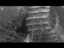 03.Решающая танковая битва на Курской дуге.2015.WEB-DL720p.GeneralFilm